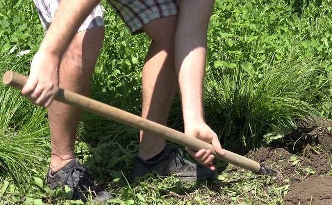 Свекровь требует, чтобы сын помог выкопать колодец на даче. Иначе делать это придется в одиночку свекру