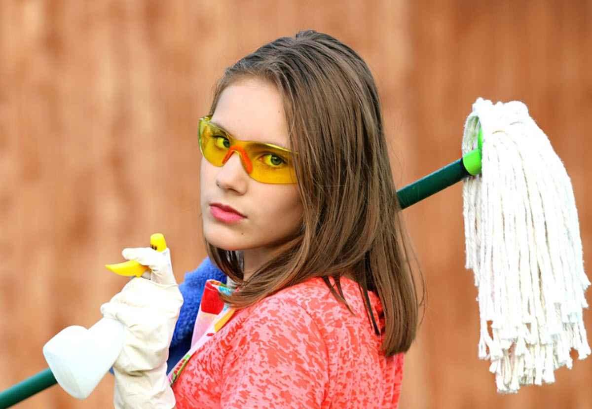 Поборницы чистоты и порядка - глупые женщины?